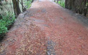 suktagor road
